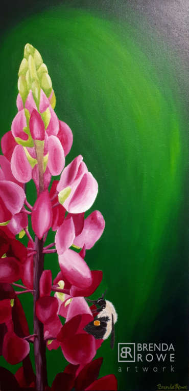 pink lupins bee