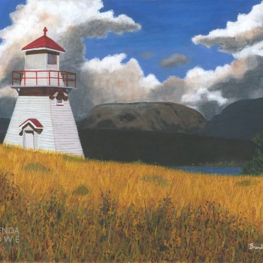 gros morne treasures