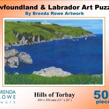 torbay puzzle