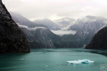 bergy bit tracy arm fjord alaska